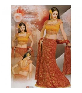 Plus Size Choli Suit